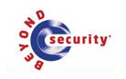 logo_beyond_security